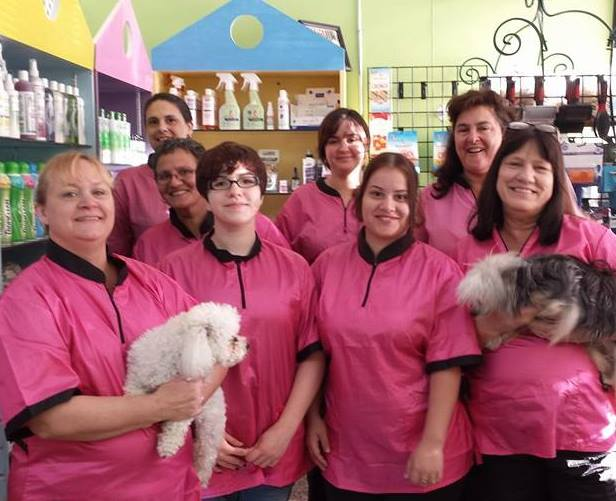employees pink october group