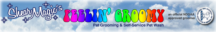 Shear Magics Feelin Groomy Pet Grooming and Self-Service Pet Wash