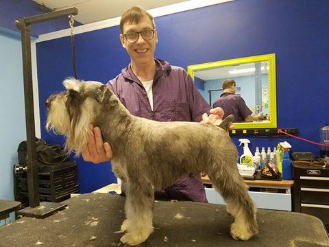 Meet our shear magic family shear magic pet grooming for A family pet salon